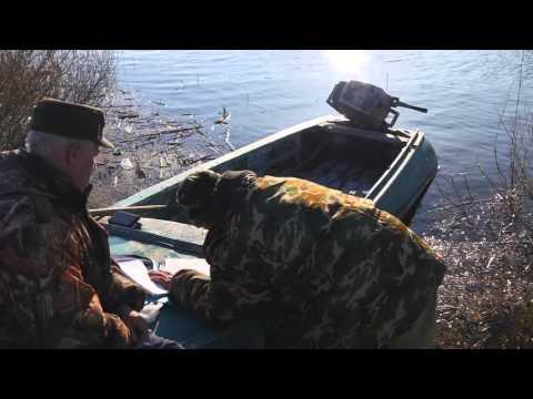 ютуб браконьерская рыбалка