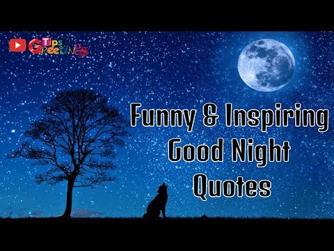 Cute quotes - Good Night Message  Funny & Inspiring Good Night Quotes  Good Night Quotes For Everyone