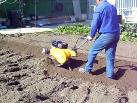 Cuando sembrar patatas videos videos relacionados con for Como cultivar patatas