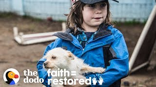 Family Keeps Going To Mexico To Rescue Dogs   The Dodo Faith = Restored by The Dodo