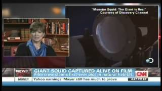 Giant Squid Captured Alive On Film (January 27, 2013)