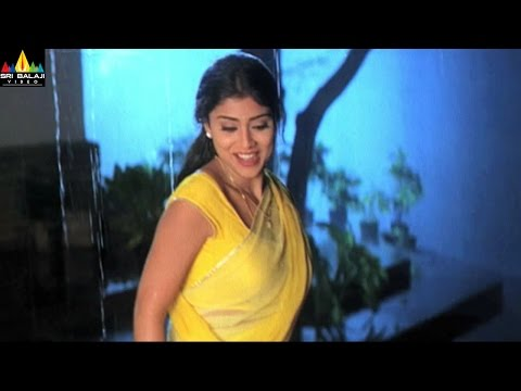 Actress Shriya Scenes Back to Back | Telugu Movie Scenes | Sri Balaji Video