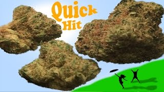 Quick Hit: Harmony Farms Chem Dawg by Take a Break with Aaron & Mo