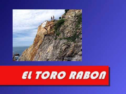 EL TORO RABON - BEBU SILVETTI