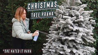 christmas tree prank on my sister!! vlogmas day 8 by Alisha Marie Vlogs