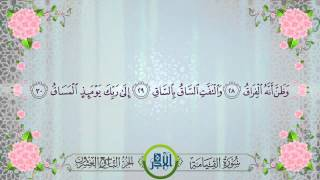 سورة القيامة   | الشيخ إدريس أبكر