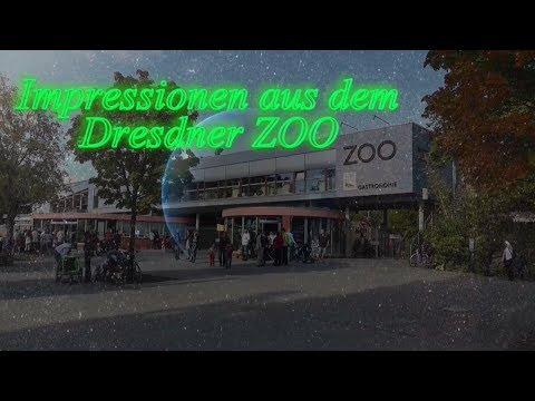 Dresden: Wiedereröffnung der Außenanlage und und de ...