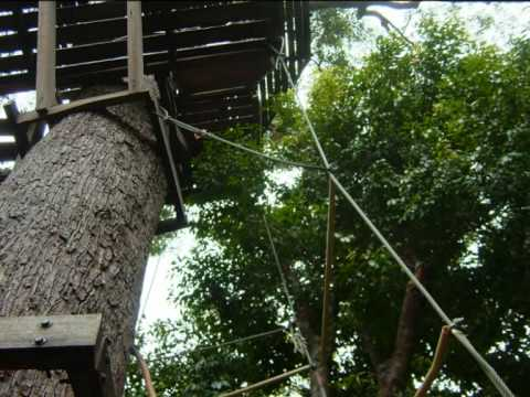 Flying Fox Zip-lines Cable Ride Adventure at Koh Samui, Thailand