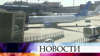 Авиакомпания «Победа» намерена подать всуд наволейболиста Александра Кимерова.