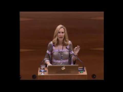 """Ana Beltrán, sobre la modificación de la Ley del Vascuence: """"La pretensión del Gobierno foral es que Navarra sea una provincia de Euskadi"""""""