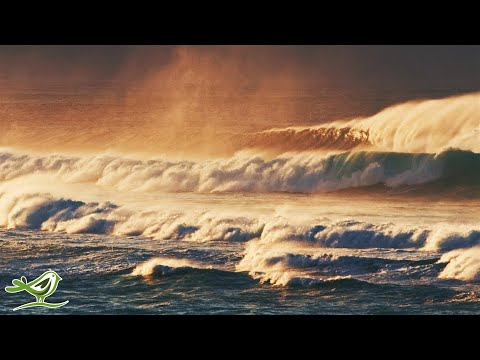 Relaxing Music & Ocean Waves - Calm Piano Music, Sleep Music, Meditation Music