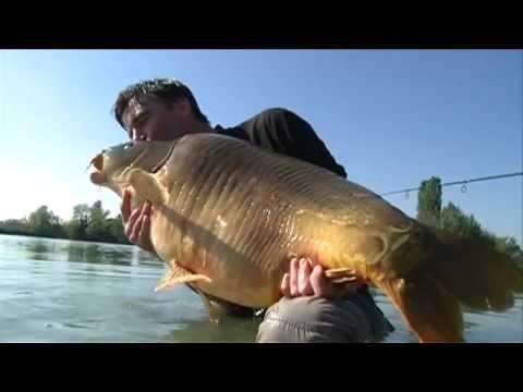 record john llewellyn, carpa da 30 kg