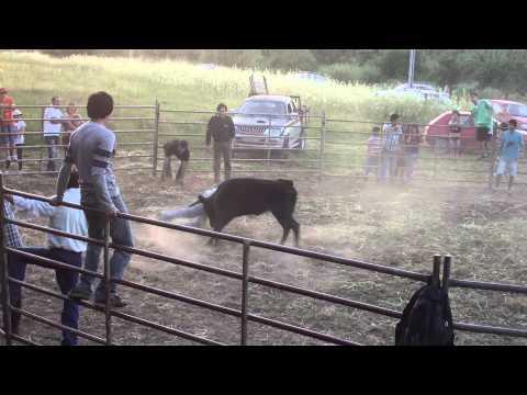 4ª Picaria do Rancho Folclórico de Arneiro das Milhariças
