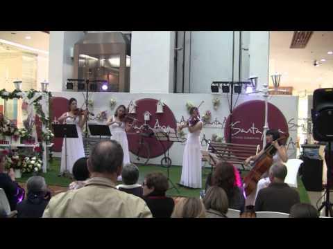 Video 235. Chicas Bon Bogotá - QuieroMusicos download in MP3, 3GP, MP4, WEBM, AVI, FLV January 2017