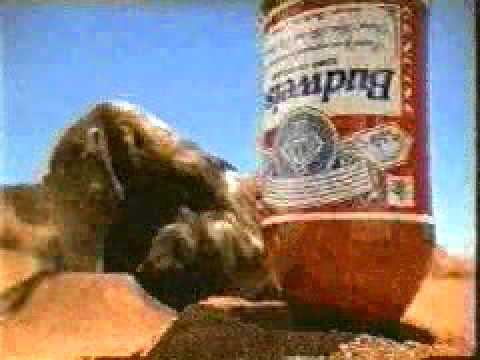 Budweiser ants – Censored Ads – Funny