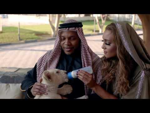 Flo Rida - Zillionaire [Official Dubai Version]