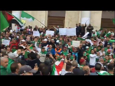Algerien: Tausende Demonstranten protestieren den zeh ...