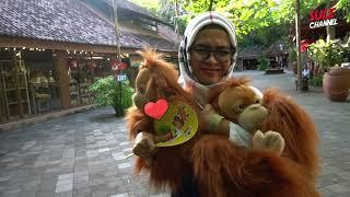 Video BAHAGIANYA NGELIHAT ANAK-ANAK KOMPAK - Bali Part (3) MP3, 3GP, MP4, WEBM, AVI, FLV Juni 2019