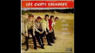 Download Lagu Les Chats Sauvages avec Mike Shannon  -  Merci     ( 1964 ) Mp3