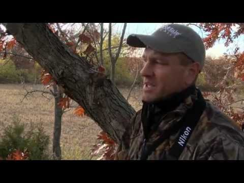 Whitetail Season: Bill Winke Back in the Tree