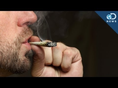 High - Cops can use a breathalyzer to test if you're drunk... but what if you're high? With marijuana legal in two US states now, Trace shows us the test law enforc...