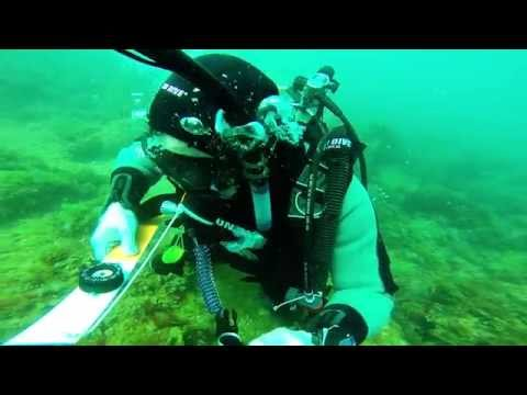 Scientific Diver – WDA