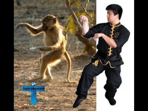 Top 10 Most Lethal Martial Arts Ever Most Deadly Martial Arts Styles