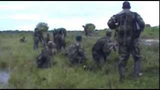 Video COMBATES GUERRILLA DE LA FARC Y EJERCITO EN ARAUCA MP3, 3GP, MP4, WEBM, AVI, FLV September 2019
