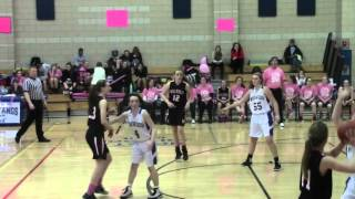 Girls Basketball Falls to Wellesley 38-29