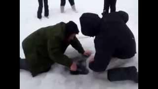 Зимняя рыбалка Вот это Улов!!!