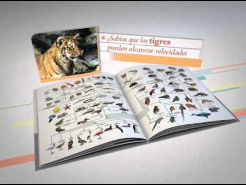 La Nación - Mundo Animal - Tigre