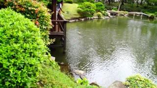 Día 297: Hiroshima bajo la lluvia