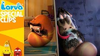Video [Official] Sadness - Fun Clips from Animation LARVA MP3, 3GP, MP4, WEBM, AVI, FLV Maret 2019