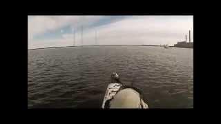 Port Augusta Australia  city images : Kayaks Vs Kingfish - Port Augusta, SA 2014