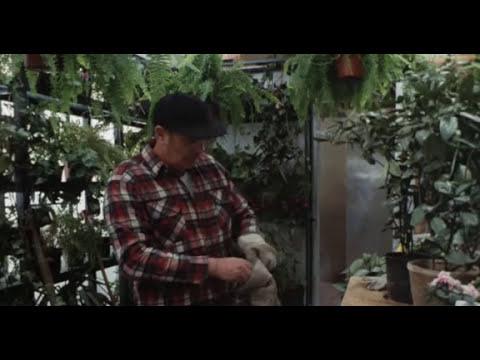 Filmes de terror completo dublado 2017 - Slugs, Muerte Viscosa (1988)- Legendado