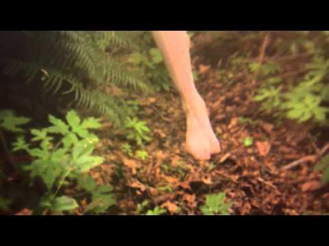 Alcest - Les Voyages De L'Âme [official music video] online metal music video by ALCEST