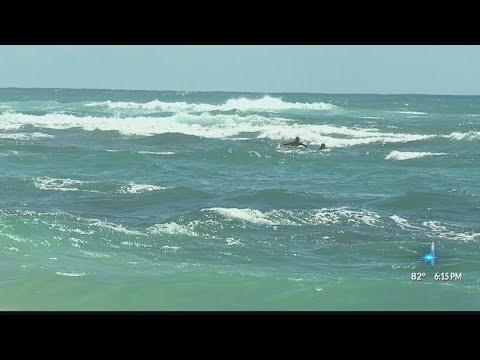 Laie Beach shark attack