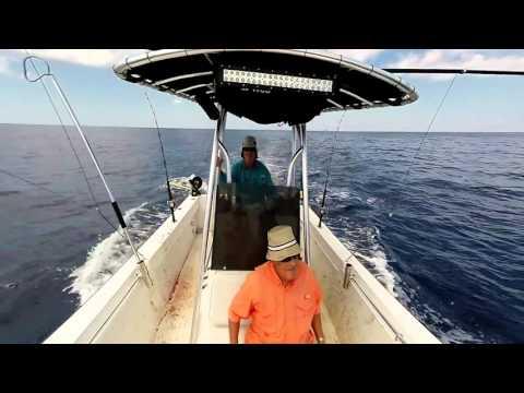 Bloody Decks - Fishing for Dorado of the Coast of Texas