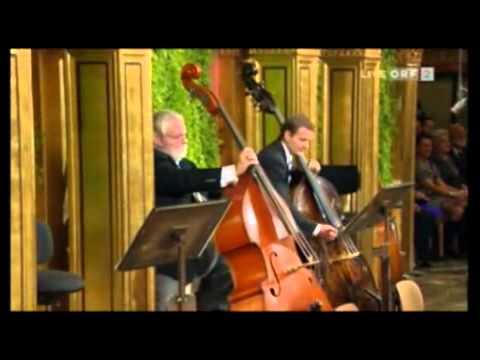 Sinfonía de los Adioses (4º movimiento), J. Haydn