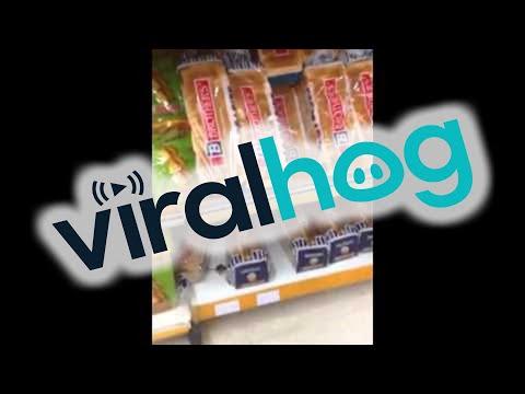 un topolino mangia tranquillamente del pane, in questo supermercato.