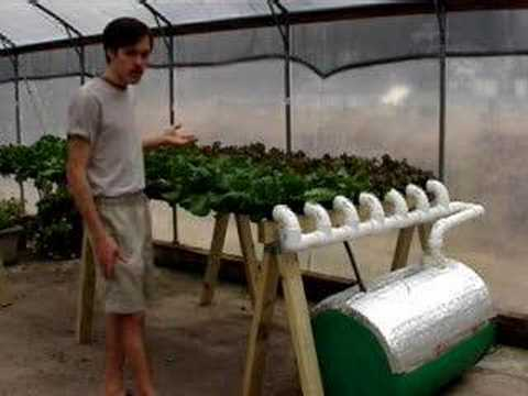 Hydroponic Lettuce Gardening Made Easy