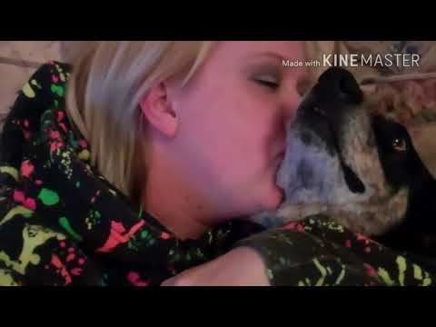 Video Amazing Funny clip of girl sexy kiss dog cute 20017 download in MP3, 3GP, MP4, WEBM, AVI, FLV January 2017