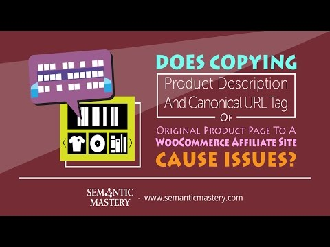 Does Copying Product Description & Canonical Of Original Product Page To Affiliate Site Cause Issues