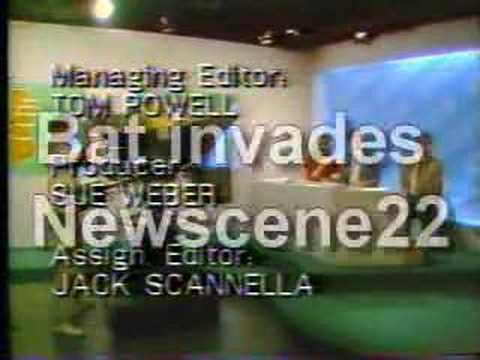 Bat invades the news