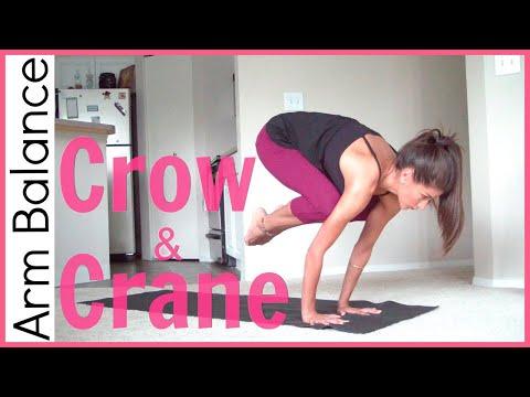 Intermediate Arm Balance – Crow Pose & Crane Pose