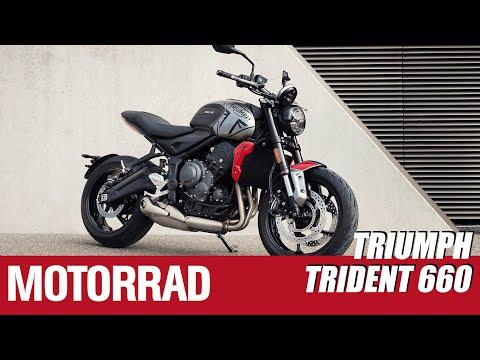 Triumph Trident 660 - Mit 81 PS für Ein- und Aufsteiger