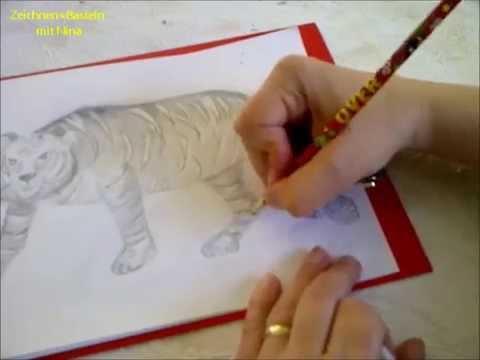 Zeichnen lernen für Anfänger.  Wilde Tiere malen.Einen Tiger malen