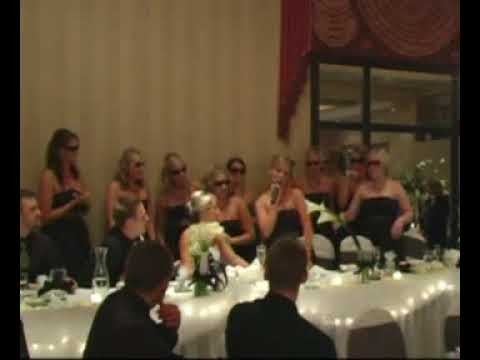 Maid of Honor Wedding Speech  - Funny!!!