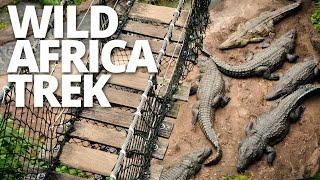 Video Wild Africa Trek | Disney's Animal Kingdom MP3, 3GP, MP4, WEBM, AVI, FLV Mei 2017