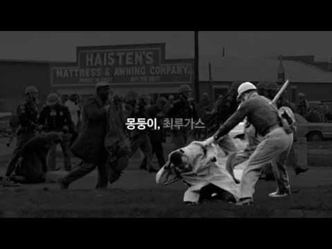 꿈과 권리를 찾기 위한 투쟁의 역사!  영상 캡쳐화면